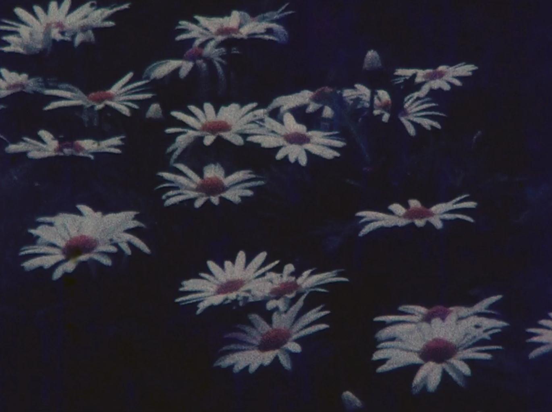 Fotograma del filme Ofrenda de Claudio Caldini.